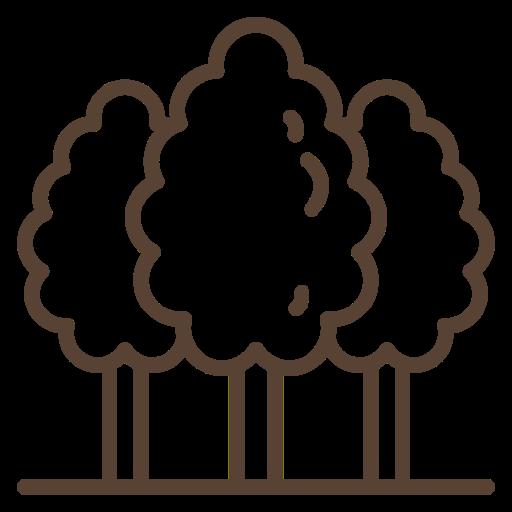 Woodna Maderas Naturales: Mesas |Suelos |Deco
